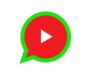 video youtube whatsapp